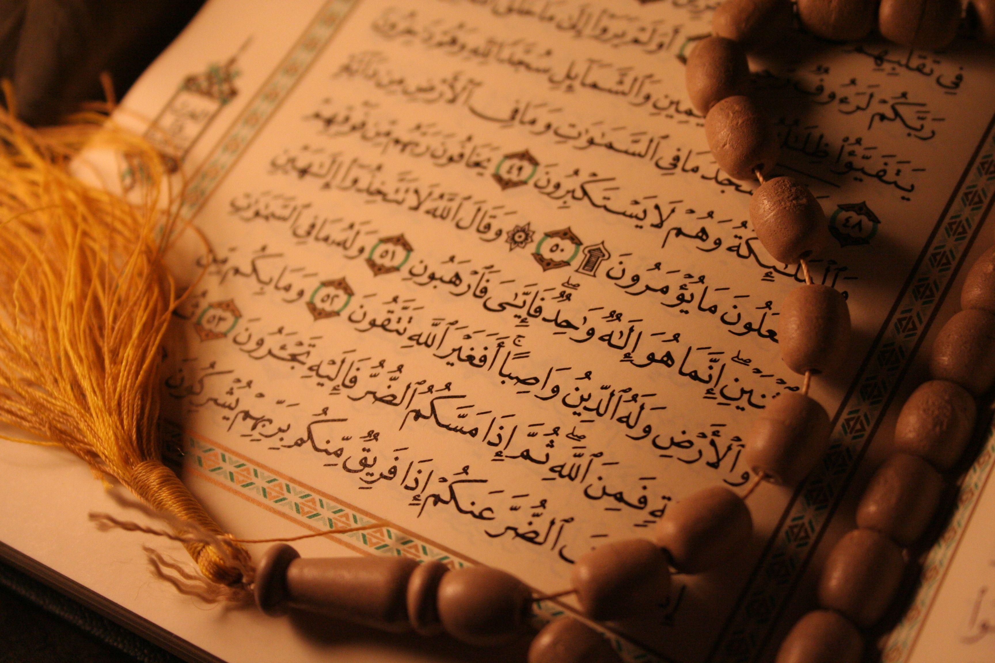عقاید دیگران از نظر اسلام